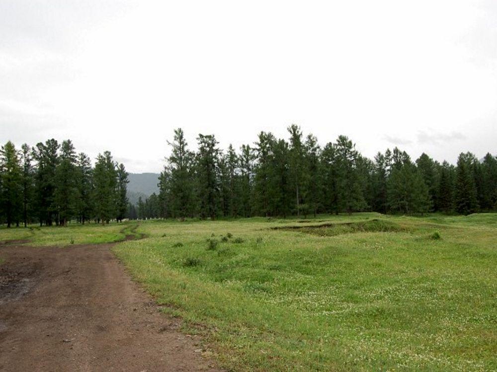 категория земель земли поселений земли населенных пунктов для сельскохозяйств ...